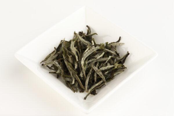 月光白の茶葉